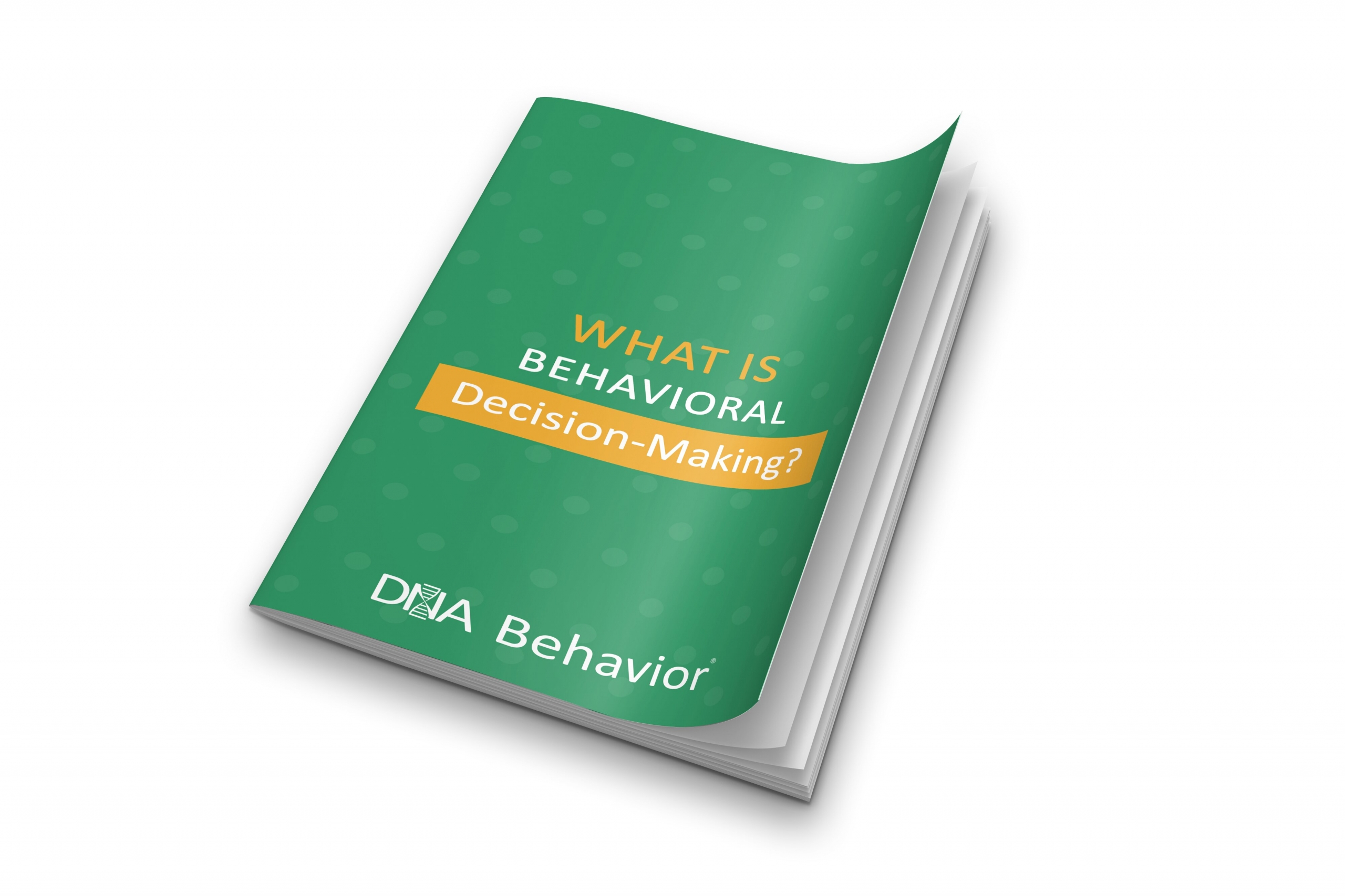 What is Behavioral Decision Making